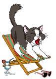 Chat se reposant dans une chaise longue Photographie stock