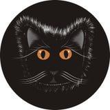 Chat sur le cercle noir Photo libre de droits
