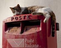 Chat sur une boîte aux lettres Images libres de droits