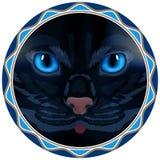 Chat, visage, yeux, vecteur, animal, mignon, chaton, arc Image libre de droits