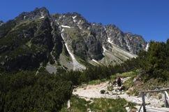 chata i berg, Slovakien Europa Arkivfoton