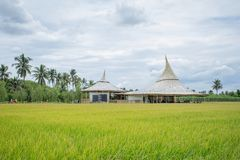 """Chata Thammachart coffee cafe in a rice field in concept """"With Nature Naturally"""