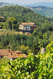 A Chateau. In the middle of the Vineyard - Italy Royalty Free Stock Image