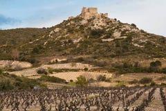 Chateau Aguilar Stock Photo