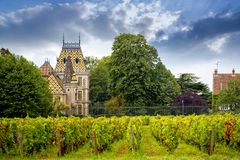 Chateau Corton Charlemagne with vineyards, Burgundy, France. Burgundy, many chateau castle are surrounded by many acres of vineyards and are great wine producers Royalty Free Stock Image