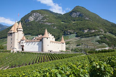 Chateau d'Aigle Stock Photography