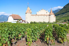 Chateau d'Aigle Royalty Free Stock Photo