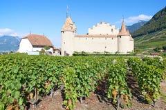 Chateau d'Aigle royalty free stock photo