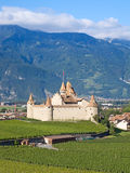 Chateau d'Aigle royalty free stock photography