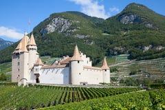 Chateau d'Aigle stock image