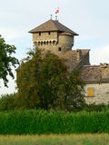 Chateau d'Avully, Brenthonne (Frankrike) Arkivfoton