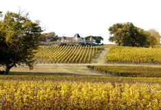 Chateau d Yquem, Frankreich lizenzfreies stockfoto