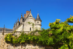 Chateau de Amboise medieval castle, Loire Valley, France Royalty Free Stock Image