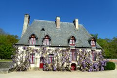 Chateau de Chenonceau, France. Wisteria Flowers up the facade of a cottage at the Chateau de Chenonceau, France stock image