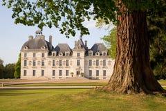 Chateau de Cheverny πίσω από το δέντρο Στοκ Φωτογραφία