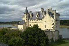 Chateau de Montsoreau Arkivbilder