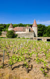 Chateau de Nobles. Burgundy, France royalty free stock image