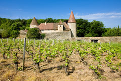 Chateau de Nobles Stock Image