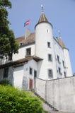 Chateau De Nyon Royalty Free Stock Photos