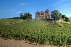 Chateau de Pierreclos, Borgoña, Francia Imagen de archivo libre de regalías