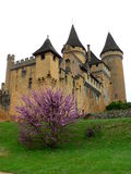 Chateau de Puymartin, Marquay ( France ) Royalty Free Stock Photography
