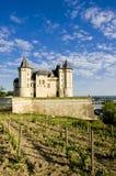 Chateau de Saumur Stock Image