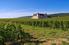 Chateau du Clos de Vougeot, Cote d`Or, Burgundy Stock Image