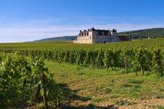 Chateau du Clos de Vougeot, Cote d`Or, Burgundy. In France royalty free stock photos