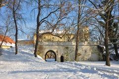 Chateau im Winter Lizenzfreies Stockbild