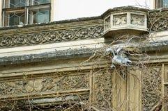 Chateau Lednice - Gesims Lizenzfreies Stockfoto