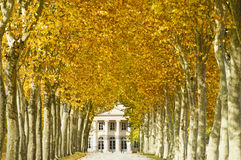 Chateau Margaux, Bordeaux, France. Chateau Margaux in Bordeaux, France, one of the best vineyards in the world, seen in autumn with colored plane tree leaves Royalty Free Stock Images