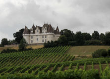 Chateau Monbazillac - Vineyard, France royalty free stock images