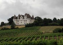 Chateau Monbazillac - vingård, Frankrike Royaltyfria Bilder