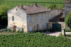 Chateau och vingård i helgonemilion royaltyfri foto