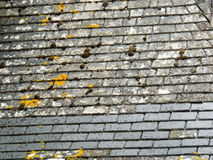 Chateau slate roof detail with repair Royalty Free Stock Photography
