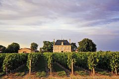 Chateau in the vineyards. A French chateau between vineyards, near Bordeaux Royalty Free Stock Photos
