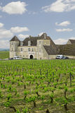 Chateau with vineyards, Burgundy, France Stock Photo