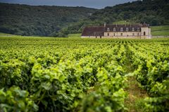 Chateau with vineyards, Burgundy, France royalty free stock photos