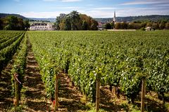 Chateau with vineyards, Burgundy, Montrachet.France. Today is one of the most beautiful in Burgundy. Château de Meursault owns 60 hectares of vineyards, all royalty free stock photos