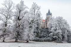 Chateau Zleby in winter Royalty Free Stock Photo