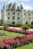 chateauchenonceau Royaltyfri Fotografi