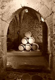 chateauchillon Royaltyfria Bilder