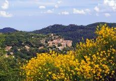Chateaudouble e scopa gialla Fotografia Stock Libera da Diritti