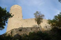 chateauu De Haut Andlau 库存照片