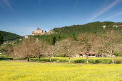 Chateau Castlenaud and a field of Rape Stock Photography
