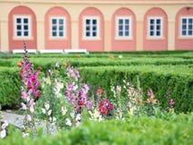Chateauxträdgård Arkivbild