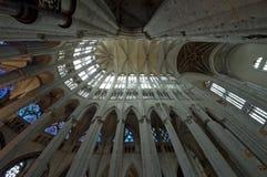 Chatedrale St Pierre Beauvais - wnętrze 01 Fotografia Stock