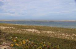 Chatham,鳕鱼角海滩 库存照片