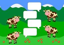 Chathintergrund mit Kühen auf grünen Feldern Stockfotografie