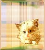 chaton au-dessus de fond contrôlé illustration stock